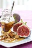 μέλι σύκων στοκ εικόνα με δικαίωμα ελεύθερης χρήσης