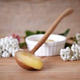 μέλι φυσικό Στοκ Φωτογραφίες
