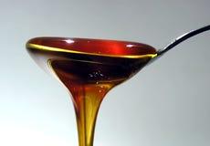 μέλι Στοκ Εικόνα