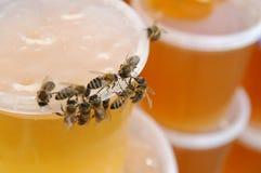 μέλι 2 Στοκ φωτογραφία με δικαίωμα ελεύθερης χρήσης