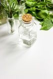 Μέντα, φασκομηλιά, δεντρολίβανο, θυμάρι - aromatherapy άσπρο υπόβαθρο Στοκ φωτογραφία με δικαίωμα ελεύθερης χρήσης