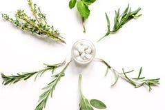 Μέντα, φασκομηλιά, δεντρολίβανο, θυμάρι - aromatherapy άσπρο υπόβαθρο Στοκ εικόνα με δικαίωμα ελεύθερης χρήσης