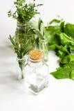 Μέντα, φασκομηλιά, δεντρολίβανο, θυμάρι - aromatherapy άσπρο υπόβαθρο Στοκ Εικόνα