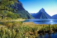 Μέρη παραδείσου στη Νέα Ζηλανδία/τη λίμνη Teanua/τον ήχο Milford Στοκ Φωτογραφίες