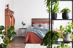 Μέρη των εγκαταστάσεων στη φυσική μινιμαλιστική κρεβατοκάμαρα με το κοράλλι και τα ανοικτό μπλε φύλλα στοκ εικόνα