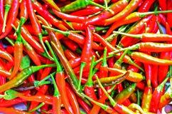 Μέρη των κόκκινων πιπεριών τσίλι Στοκ Εικόνα
