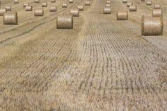 Μέρη των στρογγυλών χρυσών πακέτων αχύρου στον τομέα στοκ φωτογραφίες με δικαίωμα ελεύθερης χρήσης