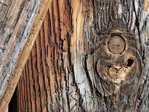 Μέρος μιας αρχαίας ξύλινης πύλης με το όμορφο ξύλινο σιτάρι στοκ φωτογραφίες με δικαίωμα ελεύθερης χρήσης