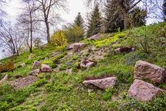 Μέρος του τοπίου του βοτανικού κήπου πόλεων ` s Στοκ Φωτογραφία