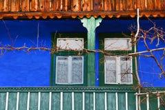 Μέρος, χρωματισμένος μπλε τοίχος, άμπελοι αμπέλων Στοκ φωτογραφία με δικαίωμα ελεύθερης χρήσης
