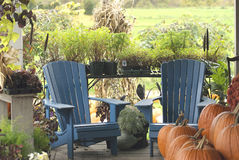 Μέρος χώρας με τις μπλε καρέκλες και τις κολοκύθες Στοκ Εικόνες
