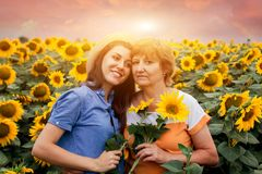 Μέσης ηλικίας μητέρα και η κόρη της που αγκαλιάζουν στον τομέα ηλίανθων Στοκ φωτογραφία με δικαίωμα ελεύθερης χρήσης