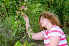 Μέσης ηλικίας γυναίκα σε έναν κήπο για τα δέντρα της Apple Στοκ φωτογραφίες με δικαίωμα ελεύθερης χρήσης