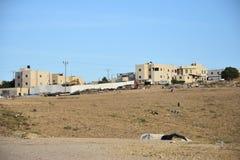 Μέση ανατολή Arara στο Negev, Ισραήλ Στοκ Φωτογραφίες