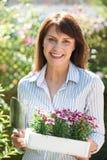Μέση ηλικίας γυναίκα που φυτεύει τα λουλούδια στον κήπο Στοκ Φωτογραφίες