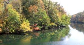 μέσος ποταμός Tennessee παπιών στοκ φωτογραφίες με δικαίωμα ελεύθερης χρήσης