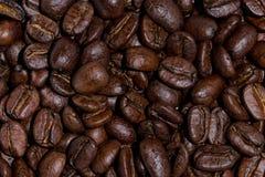 μέσο καφέ φασολιών που ψήν&epsil Στοκ φωτογραφίες με δικαίωμα ελεύθερης χρήσης