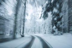Μέσω του χειμερινού δάσους Στοκ εικόνα με δικαίωμα ελεύθερης χρήσης