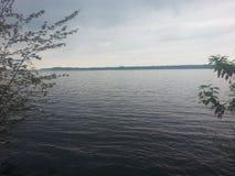Μέσω των δέντρων Στοκ φωτογραφίες με δικαίωμα ελεύθερης χρήσης
