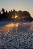 Μέσω των δασών Στοκ Εικόνα