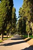 Μέσω Appia Στοκ εικόνες με δικαίωμα ελεύθερης χρήσης