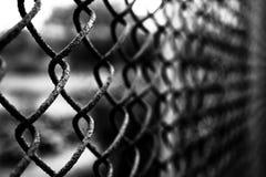 μέταλλο δικτύου Στοκ Φωτογραφία