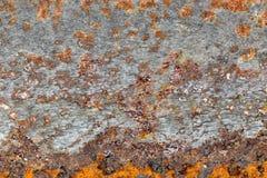 μέταλλο ανασκόπησης σκο& Στοκ Φωτογραφία