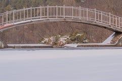 Μέταλλο και ξύλινη γέφυρα ποδιών πέρα από μια παγωμένη λίμνη Στοκ Εικόνες