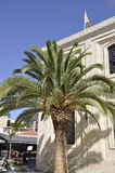 Μέτωπο φοινίκων της εκκλησίας Αγίου Titus από Ηράκλειο στο νησί της Κρήτης της Ελλάδας στοκ φωτογραφία με δικαίωμα ελεύθερης χρήσης