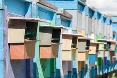 Μέλισσα-κήπος Στοκ εικόνες με δικαίωμα ελεύθερης χρήσης