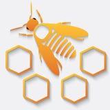 Μέλισσα και κηρήθρα εικονιδίων ελεύθερη απεικόνιση δικαιώματος