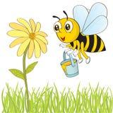 Μέλισσα και λουλούδι Στοκ Φωτογραφίες