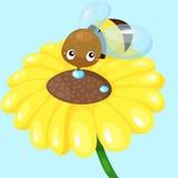 Μέλισσα κινούμενων σχεδίων με τον ηλίανθο Στοκ Φωτογραφία