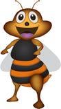 Μέλισσα κινούμενων σχεδίων Στοκ Εικόνες