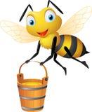 Μέλισσα με το μεγάλο κάδο του μελιού Στοκ εικόνες με δικαίωμα ελεύθερης χρήσης