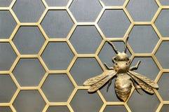 Μέλισσα σιδήρου Στοκ Φωτογραφία
