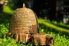 Μέλισσες στη hey κυψέλη στοκ φωτογραφία με δικαίωμα ελεύθερης χρήσης