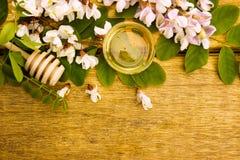 Μέλι ακακιών στοκ εικόνες με δικαίωμα ελεύθερης χρήσης