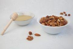 Μέλι και καρύδια Στοκ Εικόνες