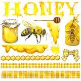Μέλι, κηρήθρα, μέλισσα μελιού Σύνολο για τα προϊόντα ετικετών σχεδίου από το μέλι η διακοσμητική εικόνα απεικόνισης πετάγματος ρα Στοκ Εικόνες