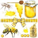 Μέλι, κηρήθρα, μέλισσα μελιού Σύνολο για τα προϊόντα ετικετών σχεδίου από το μέλι η διακοσμητική εικόνα απεικόνισης πετάγματος ρα Στοκ εικόνα με δικαίωμα ελεύθερης χρήσης