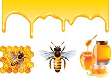 Μέλι, μέλισσα, honeycells διανυσματικό σύνολο Στοκ εικόνες με δικαίωμα ελεύθερης χρήσης