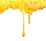 Μέλι που στάζει από ξύλινο dipper μελιού στοκ εικόνα