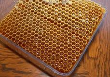 Μέλι σε honeycomb1 στοκ φωτογραφία με δικαίωμα ελεύθερης χρήσης