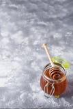 Μέλι Σταγμένο μέλι Στοκ φωτογραφία με δικαίωμα ελεύθερης χρήσης