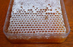 Μέλι στην άσπρη κηρήθρα 1 στοκ εικόνες