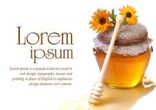 Μέλι στο βάζο Στοκ φωτογραφίες με δικαίωμα ελεύθερης χρήσης