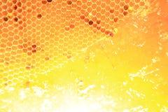 Μέλι στο υπόβαθρο κυττάρων κεριών Στοκ εικόνα με δικαίωμα ελεύθερης χρήσης