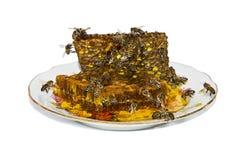 Μέλι φυσικό Στοκ Εικόνα