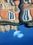 Μέδουσα στο νερό του καναλιού Στοκ φωτογραφία με δικαίωμα ελεύθερης χρήσης